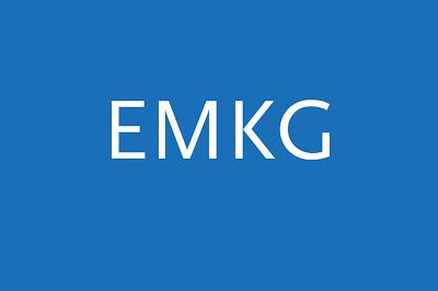 Erfolgreicher EMKG Workshop 2020 online